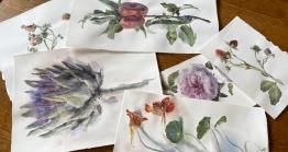 Wendy Artin, From Fausta's Garden, watercolors on paper, 2020