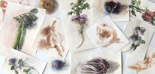 Wendy Artin, Watercolors for LUSH, 2020
