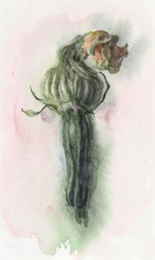 WendyArtin.200414nm-zucchiniflower.14x24